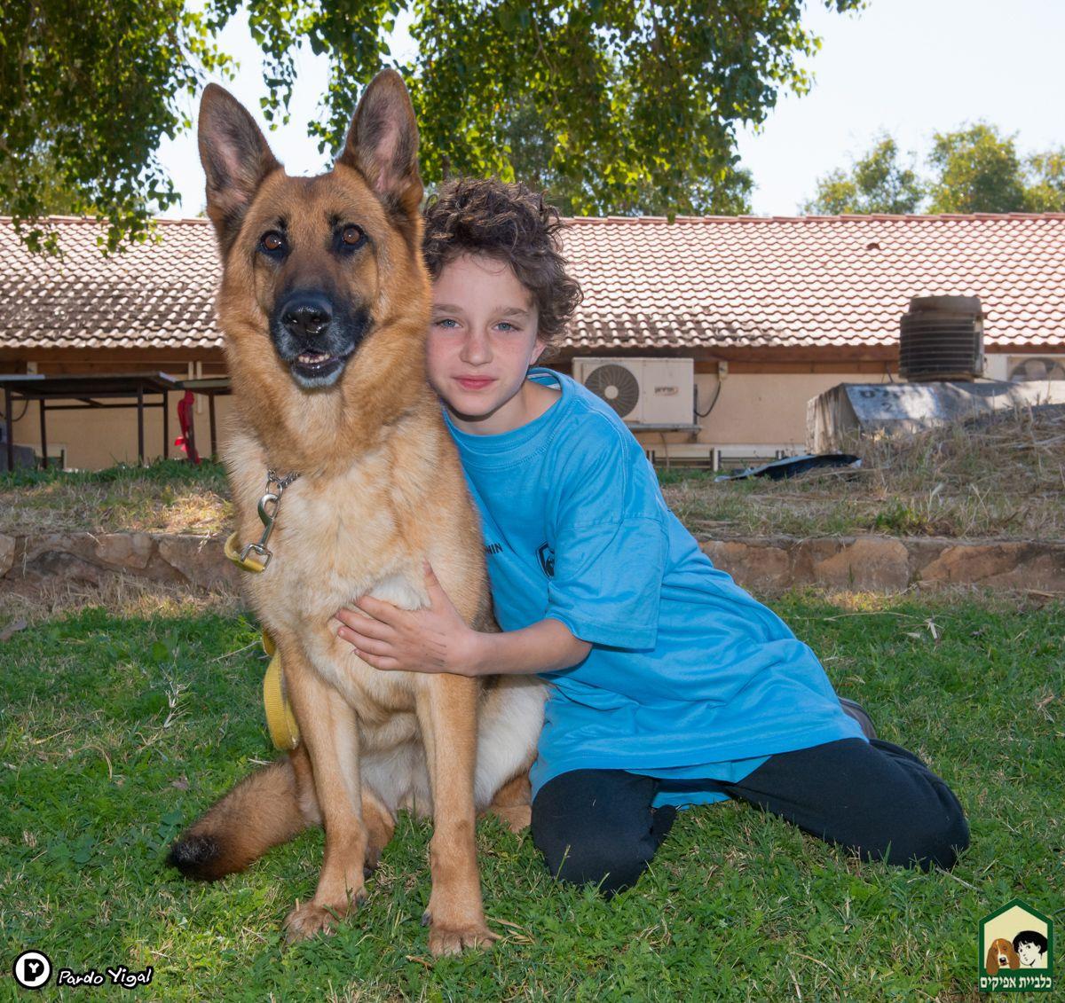 הגדול ענף טיפולי-חינוכי | פעילויות חינוך עם כלבים | כלביית אפיקים VZ-69