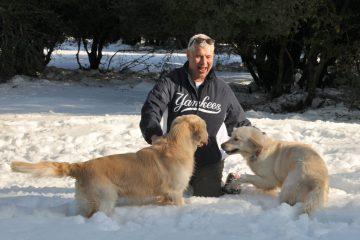 קור כלבים – כמה עובדות שכדאי לדעת על כלבים בחורף