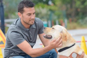 קורס הכשרת כלב שירות לנכויות ומיגבלות מגוונות