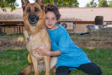 קייטנת ילד וכלבו חנוכה – ספורט אתגרי עם כלבים