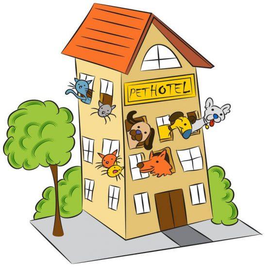 pet-hotel-image