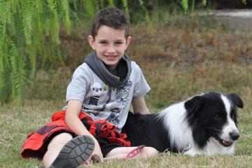 קורס כלבנות טיפולית – טיפול וחינוך בעזרת כלבים